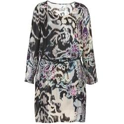 Textiel Dames Korte jurken Chipie SERRENA Multikleuren