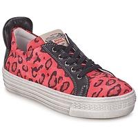 Schoenen Meisjes Lage sneakers Diesel JAKID Roze / Leopard