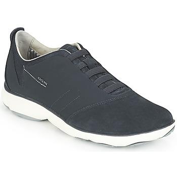 Schoenen Heren Lage sneakers Geox NEBULA Blauw