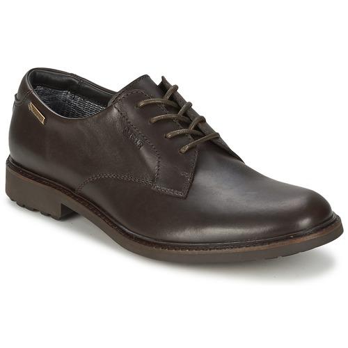 Schoenen Heren Derby Aigle BRITTEN GTX Brown / Donker