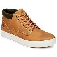 Schoenen Heren Hoge sneakers Timberland ADVENTURE 2.0 CUPSOLE CHK Brown