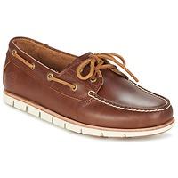 Schoenen Heren Bootschoenen Timberland TIDELANDS 2 EYE Brown