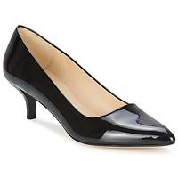 Schoenen Dames pumps Paco Gil UTIEL  zwart