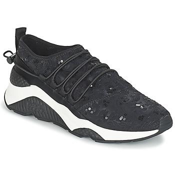 Schoenen Dames Lage sneakers Ash MISS Zwart