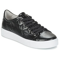 Schoenen Dames Lage sneakers Blackstone NL34 Zwart