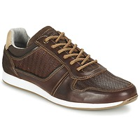 Schoenen Heren Lage sneakers Bullboxer IJINOTE Brown
