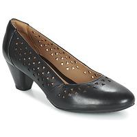 Schoenen Dames pumps Clarks DENNY DALLAS Zwart