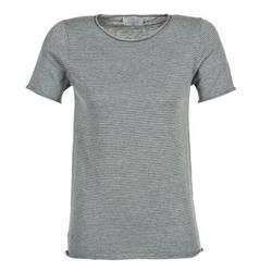 Textiel Dames T-shirts korte mouwen Casual Attitude GENIUS Grijs
