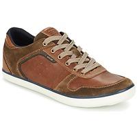 Schoenen Heren Lage sneakers Geox BOX C Brown