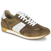 Schoenen Heren Lage sneakers Geox VINTO A EBENE