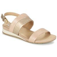 Schoenen Dames Sandalen / Open schoenen Geox D FORMOSA C Roze / Goud