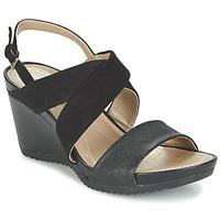 Schoenen Dames Sandalen / Open schoenen Geox D NEW RORIE A Zwart