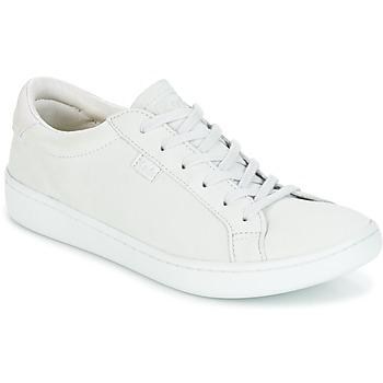 Schoenen Dames Lage sneakers Keds ACE MONO Glacier / Gray
