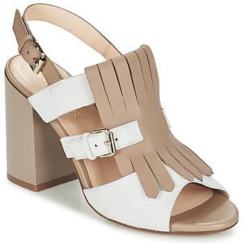 Schoenen Dames Sandalen / Open schoenen Café Noir GONFERT Grijs / Beige