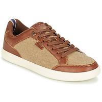 Schoenen Heren Lage sneakers Kickers AART HEMP Brown / Beige