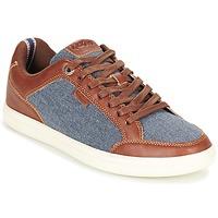 Schoenen Heren Lage sneakers Kickers AART HEMP Brown / Blauw