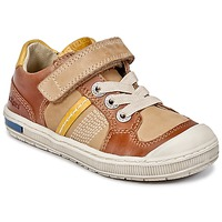 Schoenen Jongens Lage sneakers Kickers IGORLOW  CAMEL