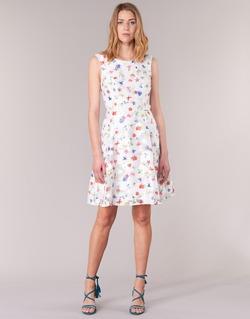 Textiel Dames Korte jurken Derhy MAESTRIA Wit