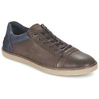 Schoenen Heren Lage sneakers Kickers CALIC Brown / Donker