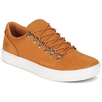 Schoenen Heren Lage sneakers Timberland ADV 2.0 CUPSOLE ALPINE OX Brown
