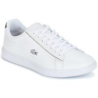 Schoenen Dames Lage sneakers Lacoste CARNABY EVO Wit