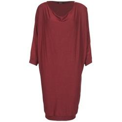 Textiel Dames Korte jurken Kookaï BLANDI Bordeaux