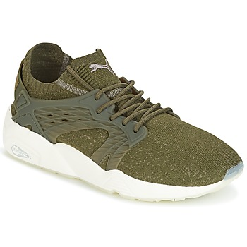 Schoenen Heren Lage sneakers Puma BLAZE CAGE EVOKNIT Kaki