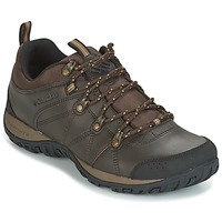 Schoenen Heren Allround Columbia PEAKFREAK VENTURE WATERPROOF Brown