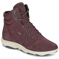 Schoenen Dames Hoge sneakers Geox D NEBULA 4 X 4 B ABX Bordeaux
