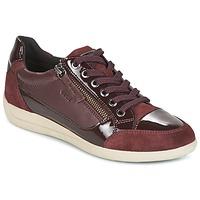 Schoenen Dames Lage sneakers Geox D MYRIA Bordeaux