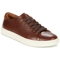 Schoenen Heren Lage sneakers Ralph Lauren JERMAIN Brown