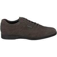 Schoenen Heren Lage sneakers Mephisto STEFANO Grijs