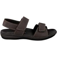 Schoenen Heren Sandalen / Open schoenen Mephisto SIMON Brown