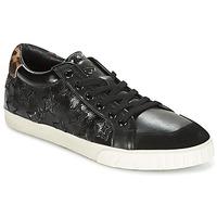 Schoenen Dames Lage sneakers Ash MAJESTIC Zwart