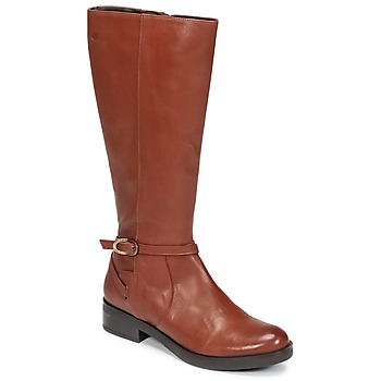 Schoenen Dames Hoge laarzen Betty London HOVANI  camel