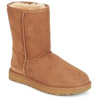Schoenen Dames Laarzen UGG CLASSIC SHORT II  camel