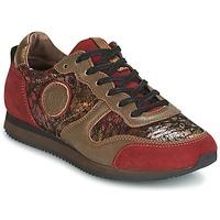 Schoenen Dames Lage sneakers Pataugas IDOL Rood / Brown
