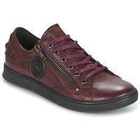 Schoenen Dames Lage sneakers Pataugas JESTER Bordeaux