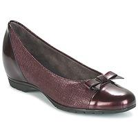 Schoenen Dames Ballerina's Pitillos 3614 Bordeaux