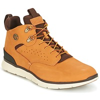 Schoenen Heren Hoge sneakers Timberland KILLINGTON HIKER CHUKKA  CAMEL