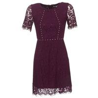 Textiel Dames Korte jurken Morgan ROUJEL Bordeaux