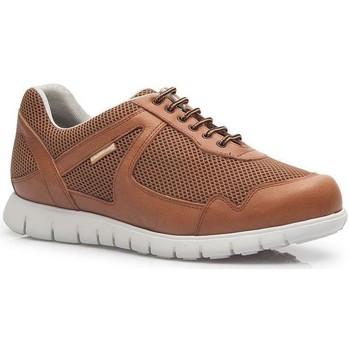 Schoenen Heren Lage sneakers Calzamedi DEPORTIVO CUERO