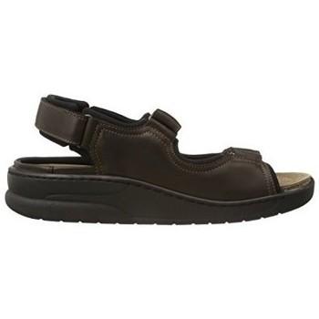 Schoenen Heren Sandalen / Open schoenen Mephisto VALDEN Brown