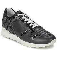 Schoenen Dames Lage sneakers Bikkembergs KATE 420 Zwart