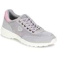 Schoenen Dames Lage sneakers Aigle LUPSEE W MESH Grijs / Roze