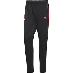 Textiel Heren Trainingsbroeken adidas Performance AC Milan Training Pant