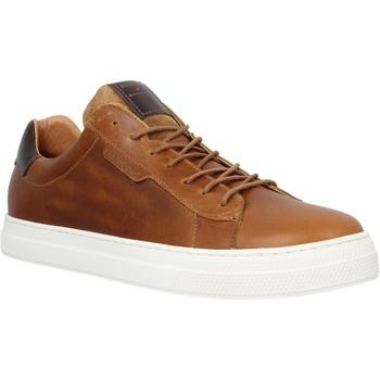 Schoenen Heren Lage sneakers Schmoove 98563 Brown