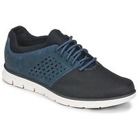 Schoenen Heren Lage sneakers Timberland BRADSTREET F/L OXFORD Marine