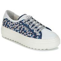 Schoenen Dames Lage sneakers Serafini SOHO Blauw