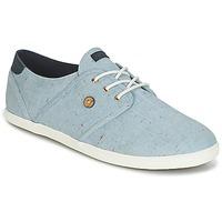 Schoenen Lage sneakers Faguo CYPRESS COTTON Blauw